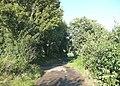 Staggered crossroads, Carr Lane, Briestfield - geograph.org.uk - 951152.jpg