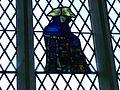 Stained Glass, St Helen Stonegate.JPG