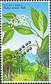 Stamp of Moldova md504.jpg