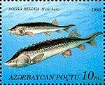 Stamps of Azerbaijan, 1993-199.jpg