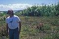 Starr-980706-1803-Arundo donax-habit with Philip-Stable Rd Spreckelsville-Maui (24227955650).jpg