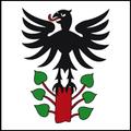 Steinen Wappen SZ.png