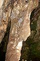 Sterkfontein Caves 25.jpg