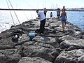 Stes Maries de la Mer plage mole 9908.jpg