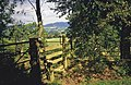 Stile near Old Colwall - geograph.org.uk - 1438025.jpg