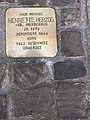 Stolpersteine Worms 49.jpg