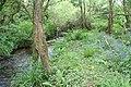 Stream below Crean Mill - geograph.org.uk - 1301614.jpg