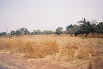 Sudan (region) - Typical landscape of the Sudan region