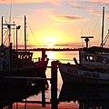 Sunrise (5830416460).jpg