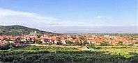 Svätý Jur, panorama.jpg