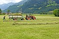 Switzerland-03673 - Bringing in the Hay (23568533243).jpg