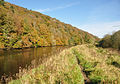 Tavy Estuary and Whittacliffe Wood 3.jpg