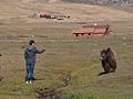 Terelj National Park, Mongolia (11441716133).jpg