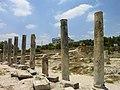 The Basilica and Forum - panoramio.jpg