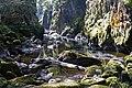 The Fairy Glen - geograph.org.uk - 1373315.jpg
