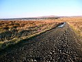 The Muirkirk to Sanquhar track - geograph.org.uk - 1096823.jpg