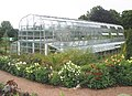 The Palm House, Torre Abbey - geograph.org.uk - 1388269.jpg