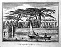 The Physick Garden, Chelsea; viewed from the Surrey bank wit Wellcome L0003897.jpg