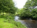The River Dee in Dentdale - geograph.org.uk - 508983.jpg