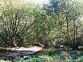 The River Ravensbourne - geograph.org.uk - 1053363.jpg