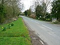 The road to Radford, Worcestershire - geograph.org.uk - 748676.jpg