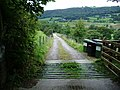 The road to Riggs - geograph.org.uk - 558105.jpg