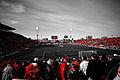 Toronto FC 1-0 Real Salt Lake.jpg