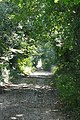 Track towards Vernham Dean - geograph.org.uk - 985158.jpg