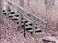 Trail 2 PB250202.jpg