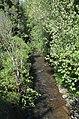 Trilho do rio Febro VI (33097963534).jpg