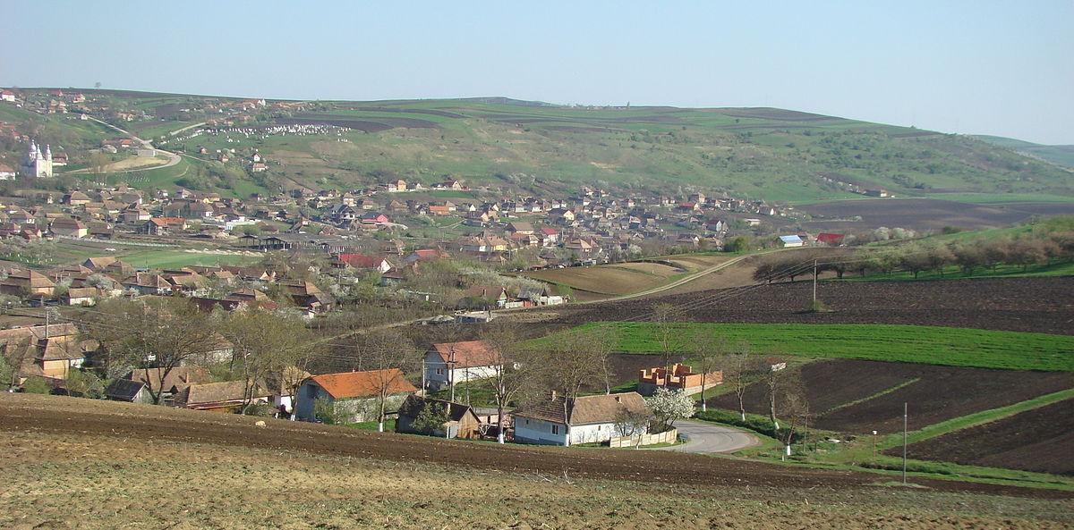 Comuna Tritenii De Jos Cluj Wikipedia