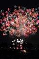 Tsuchiura Fireworks 2014.jpg