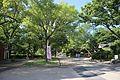 Tsuruma Park 20170527-06.jpg