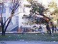 Tuzla unrest 2014-02-07 file 19.JPG