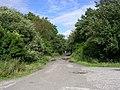 Twelve Yards Road - geograph.org.uk - 44646.jpg