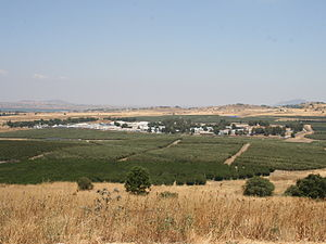 United Nations Disengagement Observer Force - The UNDOF base near the Quneitra Crossing.