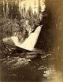 Upper Snoqualmie Falls, Washington, circa 1889-1891 (BOYD+BRAAS 135).jpg