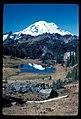 Upper Tipsoo Lake (no official name) across Hwy 410 from Tipsoo Lake. 101981. slide (60cd93f290f84c3f98d22f8880b5000b).jpg