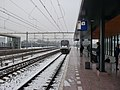 Utrecht Vaartsche Rijn 2017 I.jpg