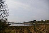 Utrechtse Heuvelrug Leersumse veld.jpg