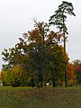V.Stus square garden, Kiev10.JPG