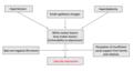 Vascular depression proposed mechanism.png