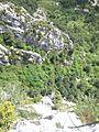 Via ferrada Roques de l'Empalomar, Vallcebre (juny 2011) - panoramio (1).jpg
