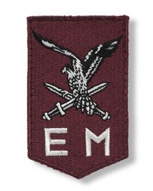 11th Airmobile Brigade (Netherlands) - Image: Vierde mouwembleem luchtmobiele brigade