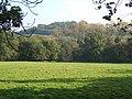 View from Greensand Way near Skimmington - geograph.org.uk - 592971.jpg