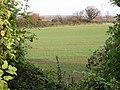 View of farmland through a gap in the hedge - geograph.org.uk - 620626.jpg