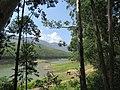 Views around Munnar, Kerala (74).jpg