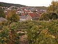 Vignes (Verzenay.51) Cl.J.Weber (23050625783).jpg