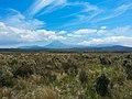 Volcanic New Zealand-1358811874748.jpg