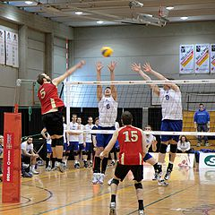 Volleyball RetO 3.jpg